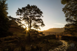 Around Langdale